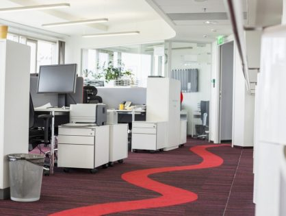 5 Reasons You Need a Professional Office Carpet Cleaner